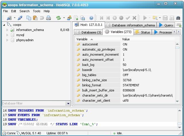 Главное окно программы HeidiSQL